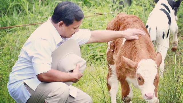 Canda Prabowo: Sekarang Sudah Sabar, Harusnya Dulu Kudeta