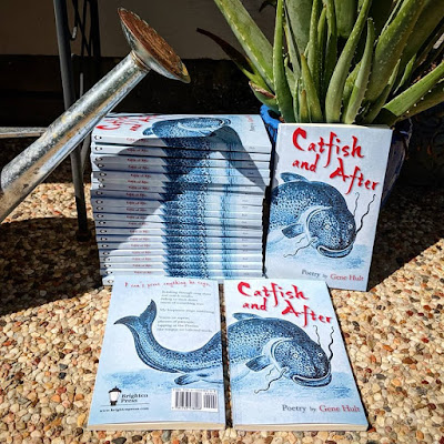 Catfish and After, poetry by Gene Hult, from Brighten Press