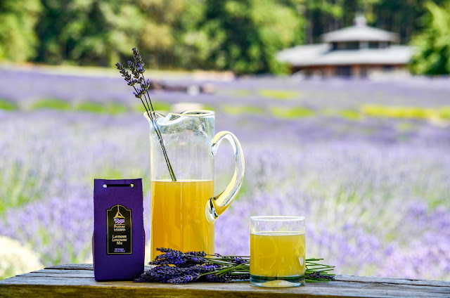 How to Make Pelindaba Lavender's Lemonade