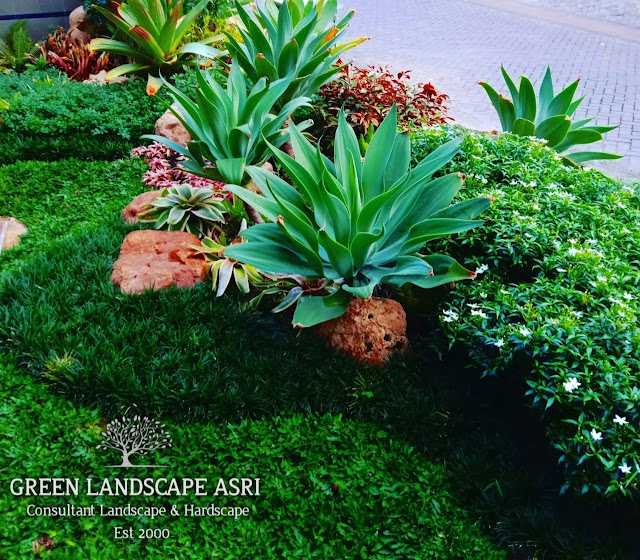 Jasa Tukang Taman Boyolali | Jasa Pembuatan Taman Di Boyolali Jawa Tengah