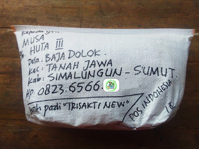 Benih padi yang dibeli   MUSA Simalungun, Sumut.  (Setelah packing karung).