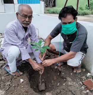 कोलार रोड पर पर्यावरण दिवस मनाया गया।