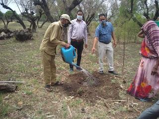 विष्व पर्यावरण दिवस पर नर्सरी में किया पौध रोपण