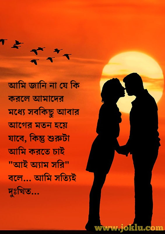 I am sorry message in Bengali