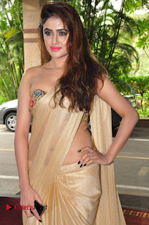 Actress Sony Charishta Pictures in Saree at Aura Fashion Exhibition Launch  0009.JPG