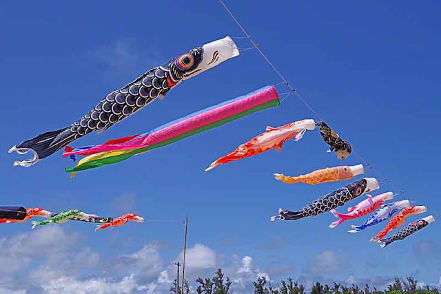 koinobori,carp streamers, sky over a flooded field