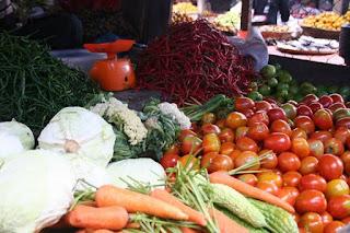 Forum dan Komunitas Agrobisnis Pertanian yang Top di Indonesia