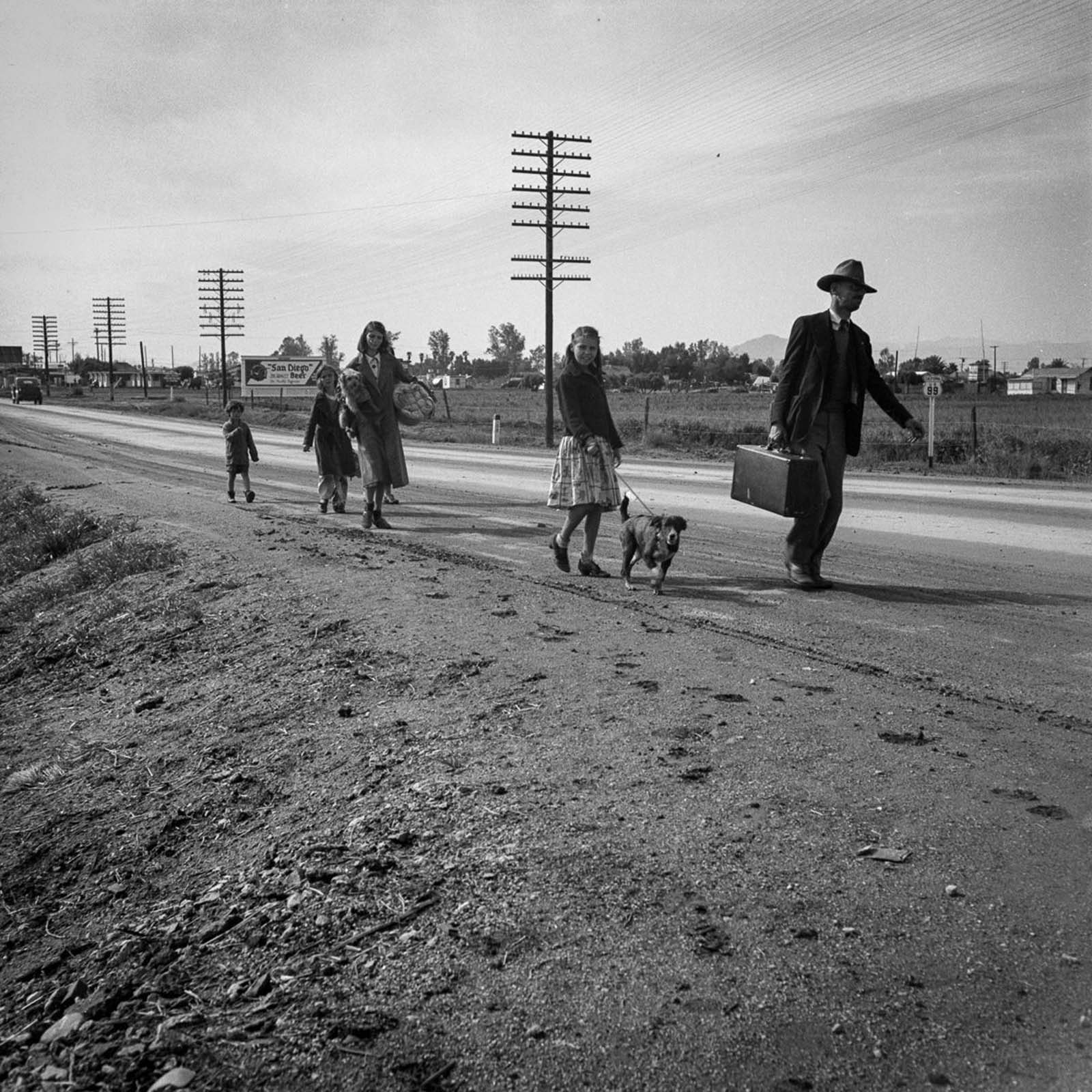 A homeless cotton-picking family of seven walk on Highway 99 from Phoenix, Arizona to San Diego in search of relief. 1939.