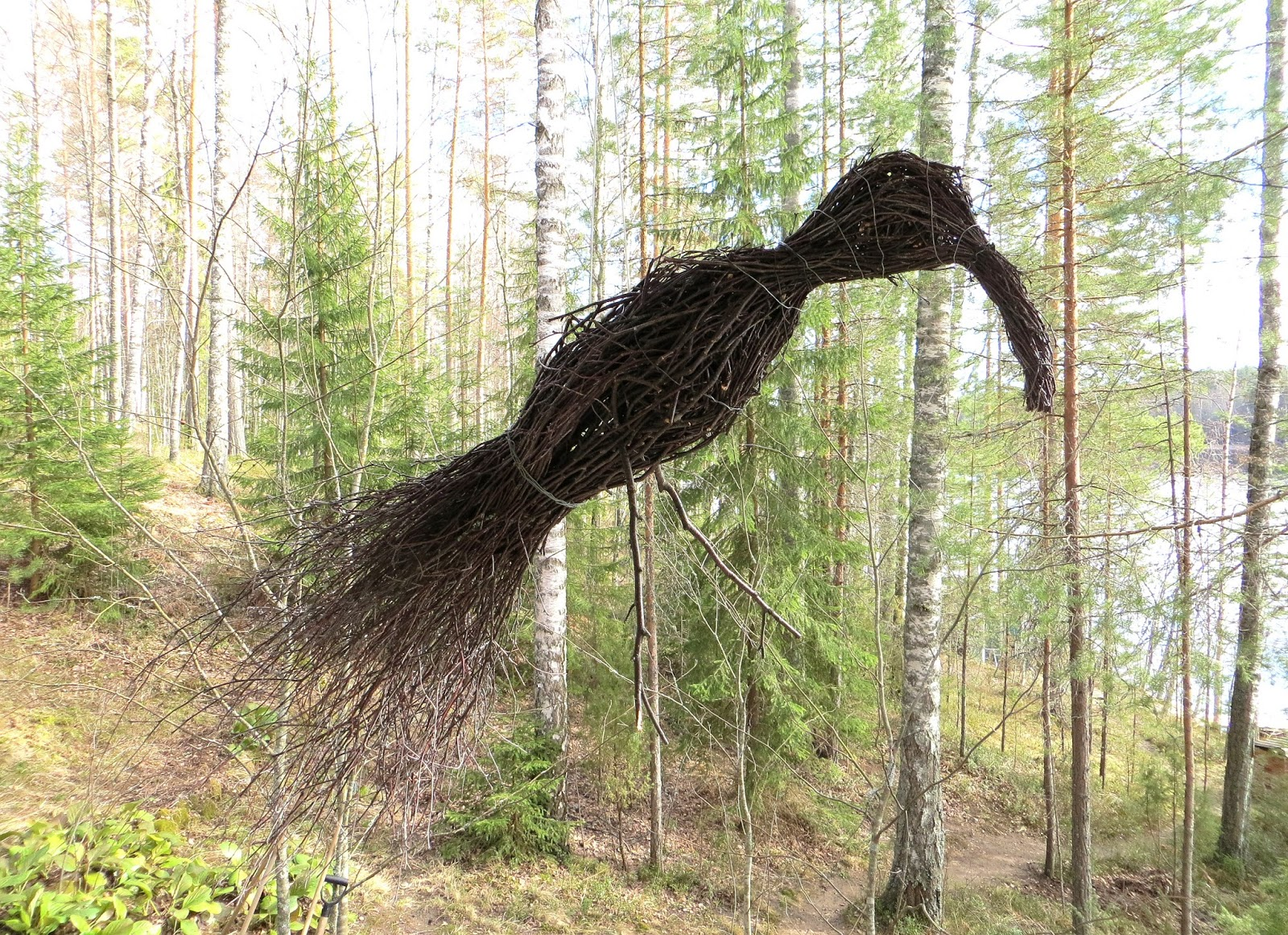 Twig bird Risulintu