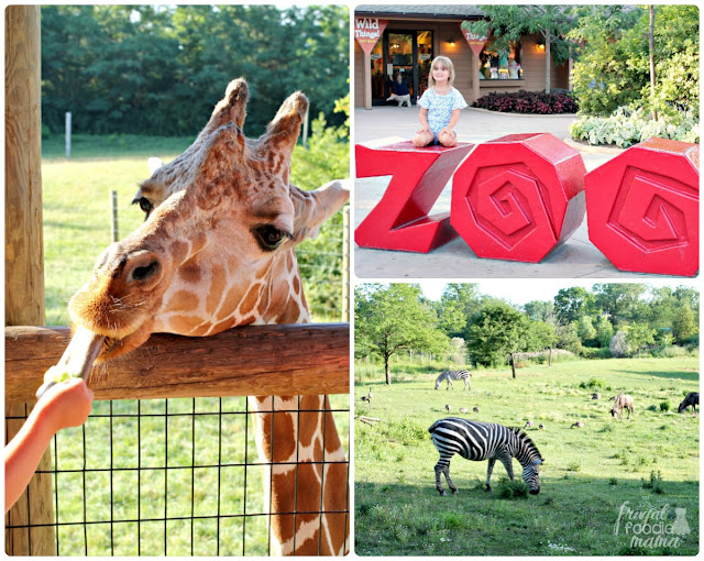 Get outside & explore the 40 acres of animals, rides, & landscaped grounds at the Fort Wayne's Children Zoo.