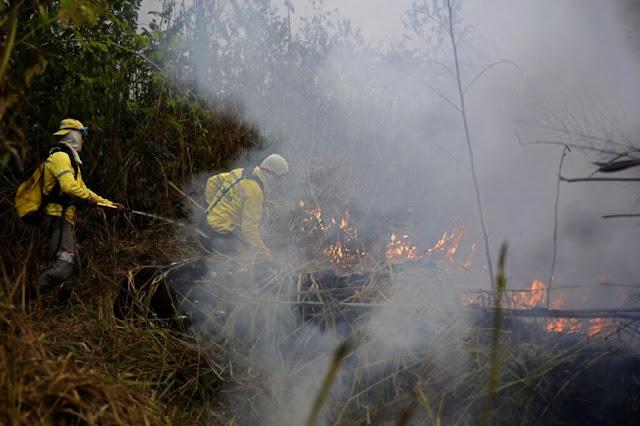 MUNDO: Amazonía brasileña registró cerca de 90.000 focos de incendio en 2019.