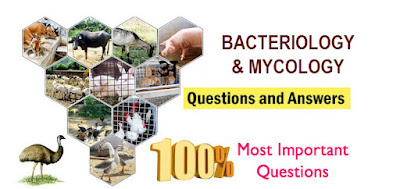 BACTERIOLOGY AND MYCOLOGY QUESTION ANSWERS