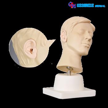 Manekin Pelatihan Irigasi Telinga