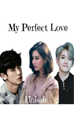 My Perfect Love by Finisah Pdf