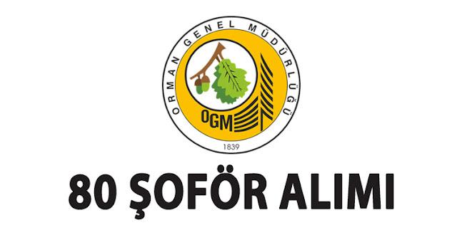 Orman Genel Müdürlüğü 80 Şoför Alımı