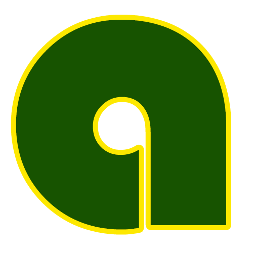 logo www.ahmadamir.com