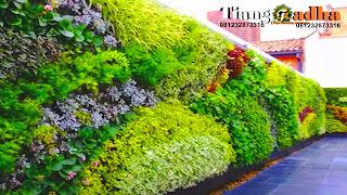 tukang taman vertikal dan jasa vertical garden