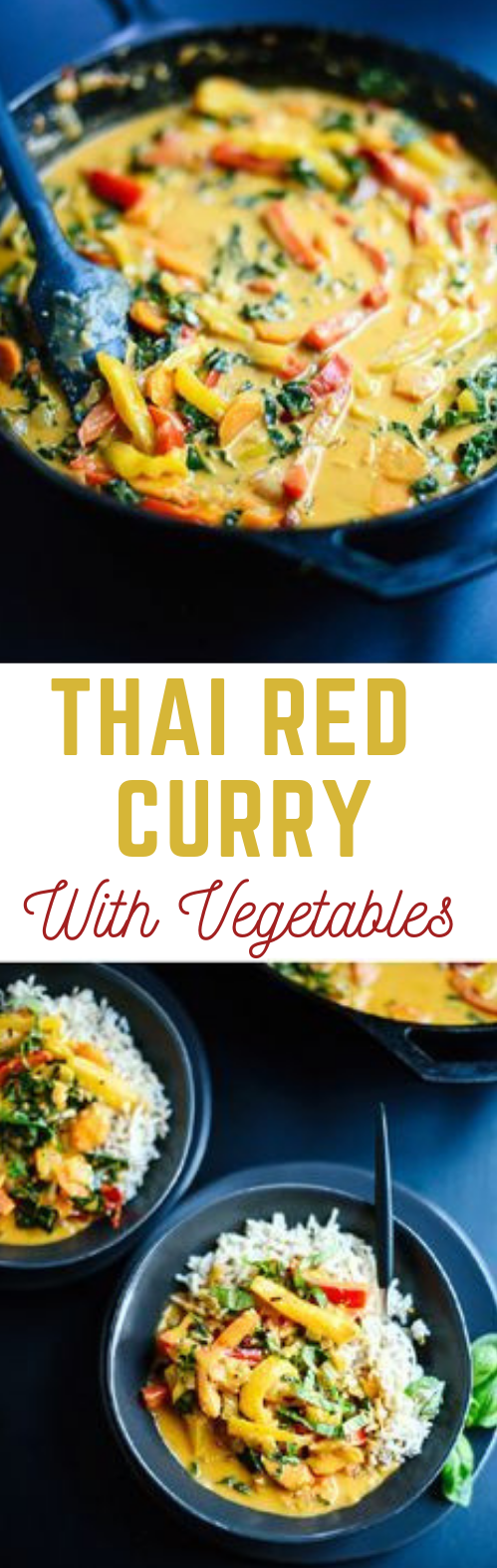 Thai Red Curry with Vegetables #dinner #healthyeat