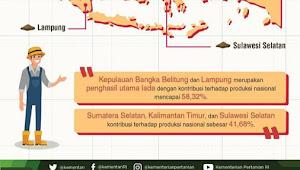 Kemendag Mengaku Keunggulan Lada Indonesia Kurang Disosialisasikan