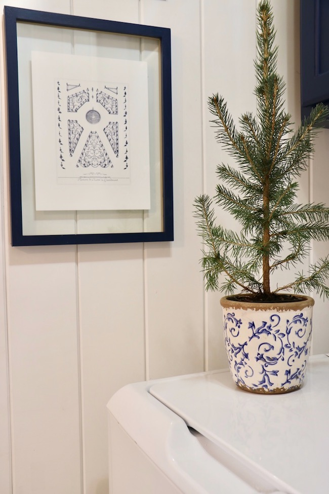 Blue Christmas Laundry Room decorated early with spruce seedling in a blue and white scroll flower pot to go with the navy and white decor in the room