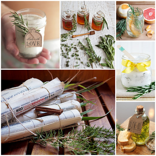 Six for Saturday of Sunday: Rosemary for Remembrance