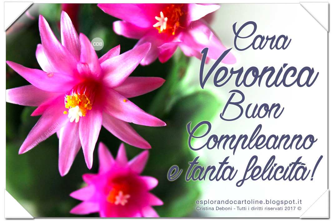 Cdb Cartoline Per Tutti I Gusti Cartolina Cara Veronica