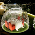These coolest bubble pods are offered to diners at this Manila hotel