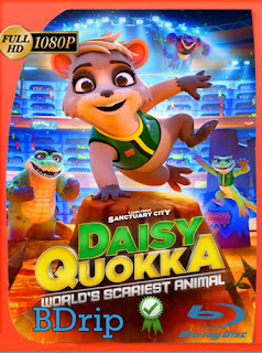 Daisy Quokka, ciudad santuario (2021) BDRip [1080p] Latino [GoogleDrive] PGD