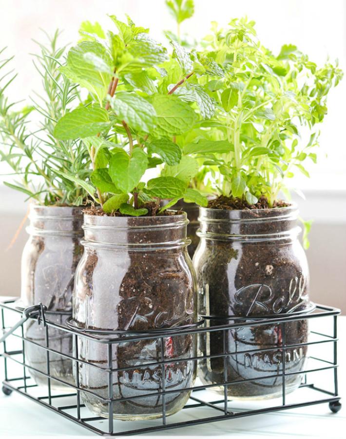 http://blog.consumercrafts.com/decor-home/mason-jar-diy-herb-garden/