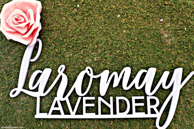 Granja de Lavanda Laromay Lavender Farm en Hollis, New Hampshire