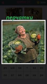 женщина в перчатках собирает на поле урожай капусты