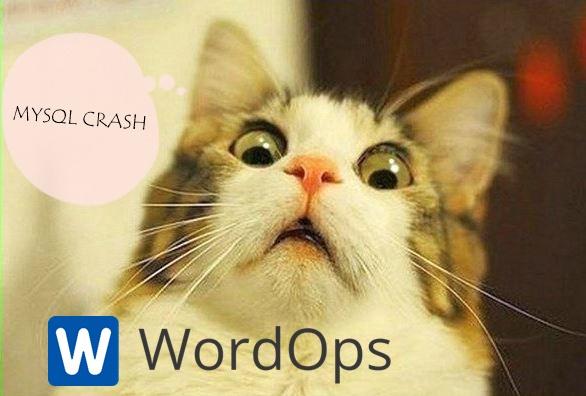 Cara Restart Otomatis MariaDB WordOps yang Sering Terhenti atau Mati