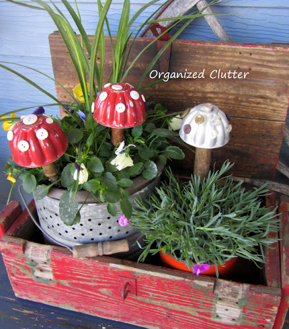 A red hinged crate of annuals.