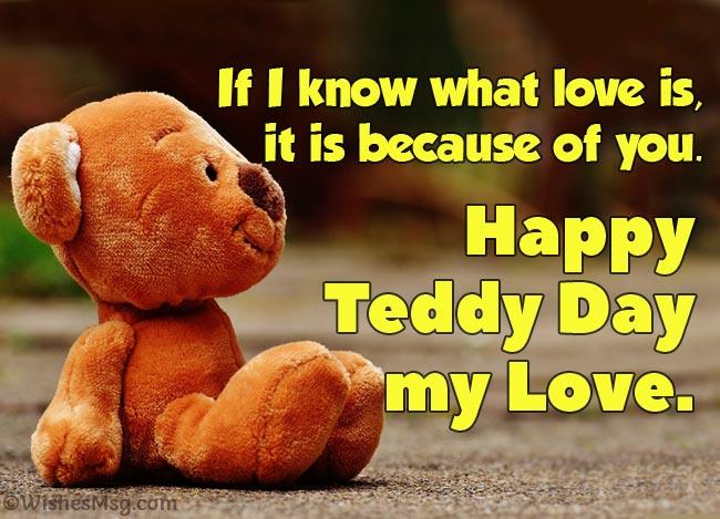 Bear quotes teddy boyfriend Boyfriend Teddy