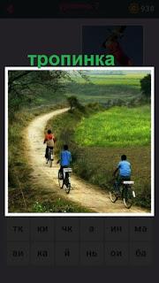 по тропинке на велосипедах двигаются несколько человек