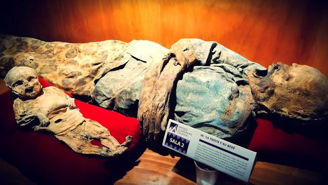 El Museo de Momias de Celaya cuenta con dos salas de exhibición. En la primera se encuentran principalmente los cuerpos momificados de adultos y en la segunda de mujeres con sus bebés.
