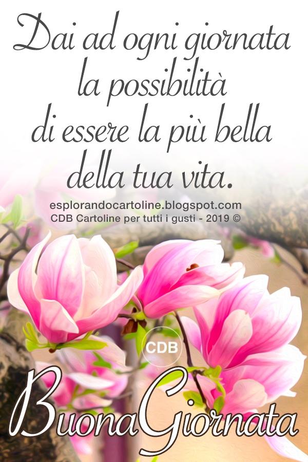 Cdb Cartoline Per Tutti I Gusti Cartolina Buona