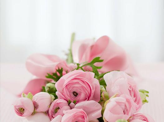 أحلى الورود ورق حائط 8