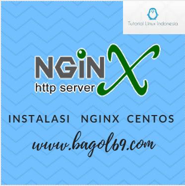 Install nginx  Centos