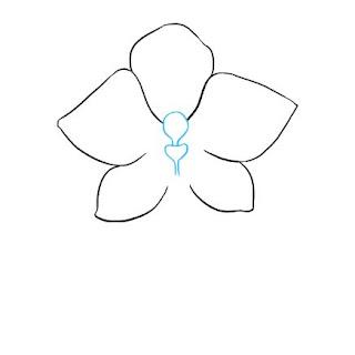 تعليم الرسم سهل رسم زهرة الأوركيد
