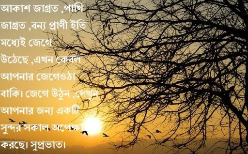 বাংলা সুপ্রভাত এসএমএস