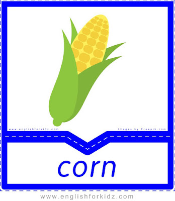 Corn - English flashcards for the fruits and vegetables topic