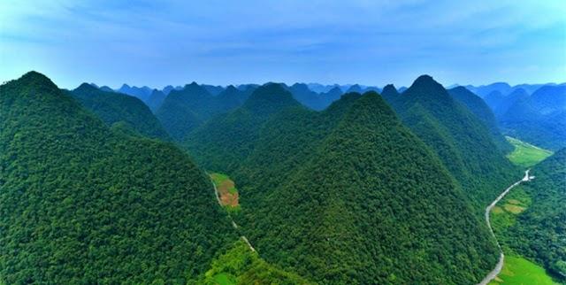 Το δάσος με τις πράσινες πυραμίδες που είναι μοναδικό στον κόσμο