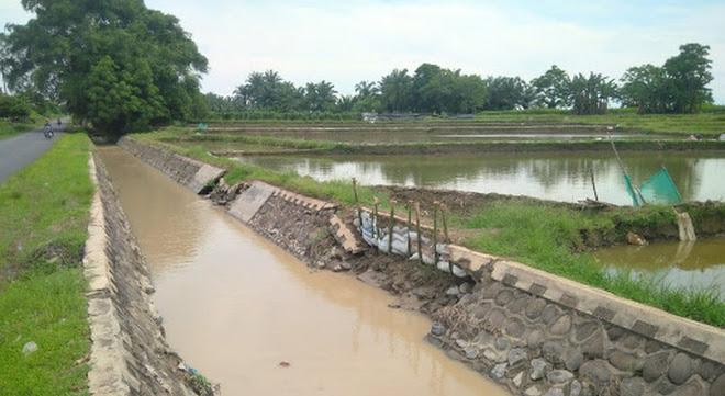 Kondisi Dinding Jaringan Irigasi Javacolonisasi di Purbaganda Memprihatinkan
