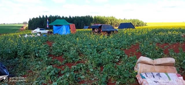 Invasões de terras voltam a preocupar autoridades do Paraguai
