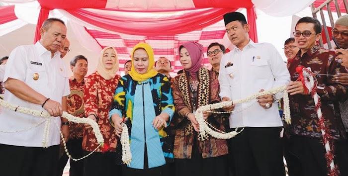 Dewan Koperasi Indonesia Apresiasi kinerja Pemprov Lampung