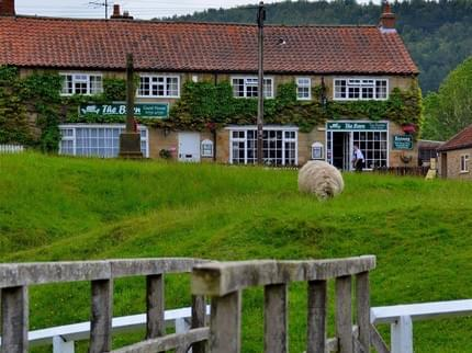 20 of the Best Places to Stay near Flamingo Land  - The Barn Guest House and Tea Rooms