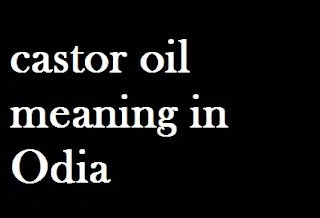 Castor Oil Odia Meaning Castor Oil Meaning in Oriya