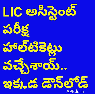 lIC Assistant Examination Halls Tickets .. Download here