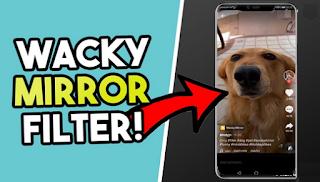 Wacky mirror filter tiktok || How to get wacky mirror filter on tiktok